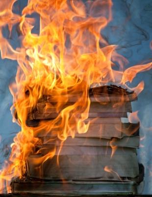 bibliothek der verbrannten bücher